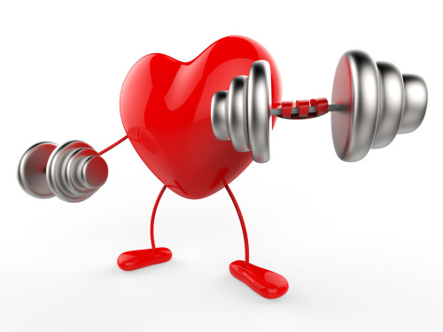 Weights Heart Shows Working Out And Active