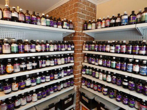 The Top 10 Benefits of Herbal Tonics